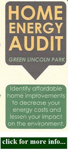 Home Energy Audit photo link