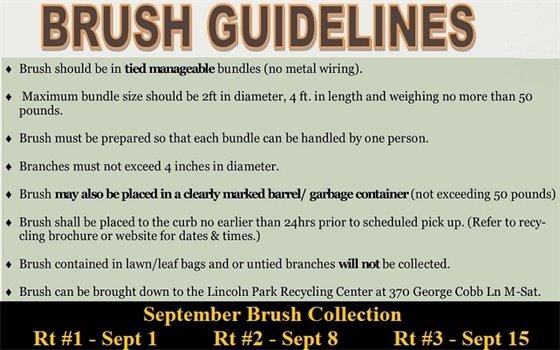 DPW - brush