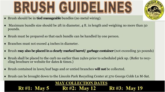 brush collection guidelines