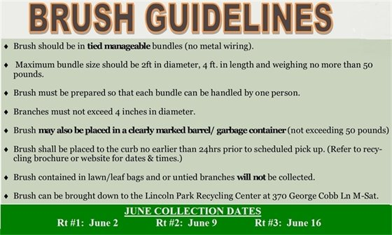 Brush Guidelines
